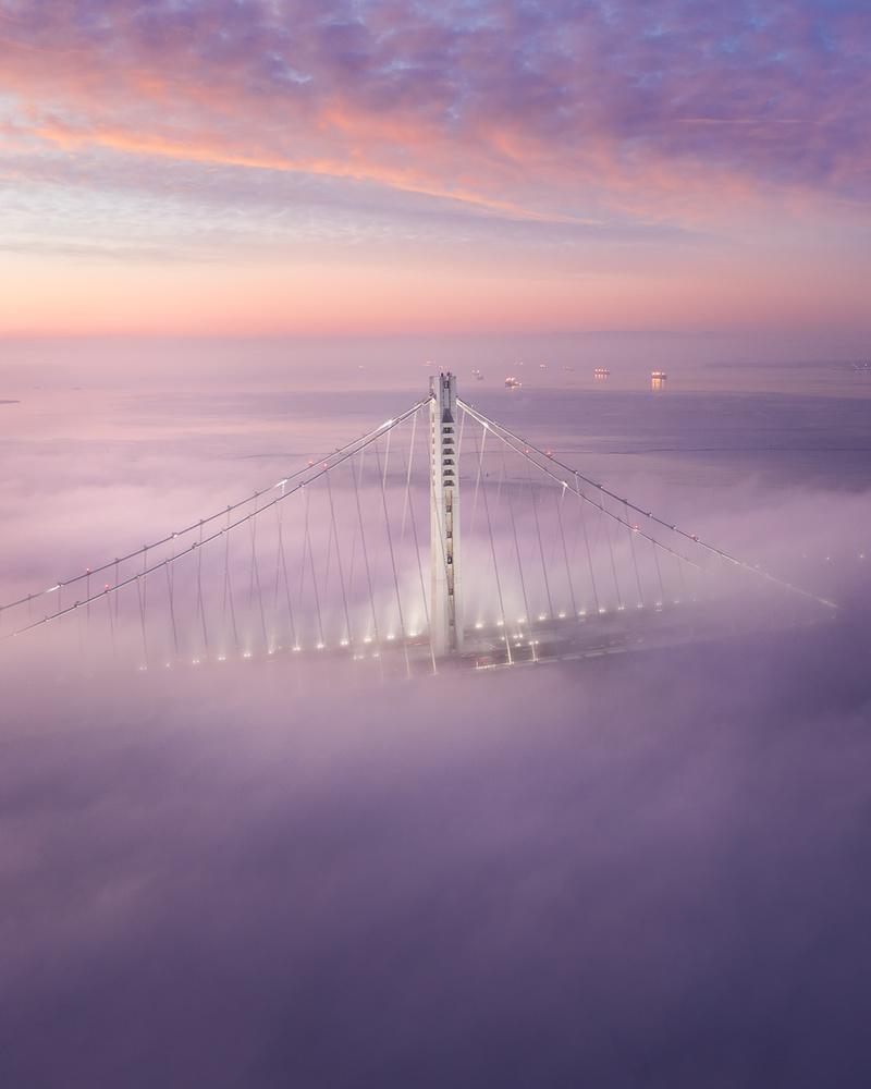 Bay Bridge Bliss by Ryan Fitzsimons