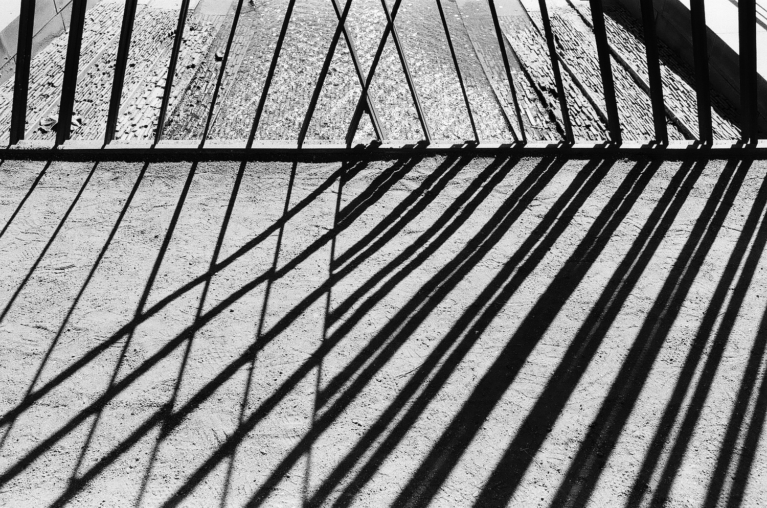 Fence Shadows by Evan Smith