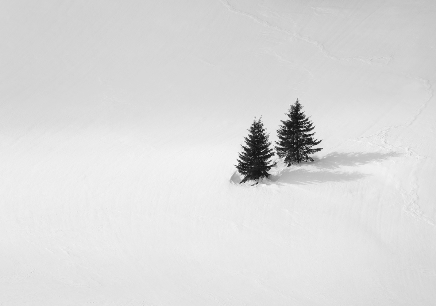 Together by Tiberiu Scarlat
