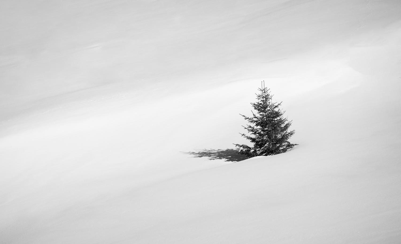 To be alone by Tiberiu Scarlat