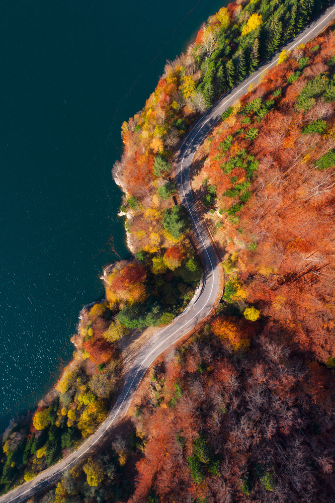 Road along the lake by Tiberiu Scarlat