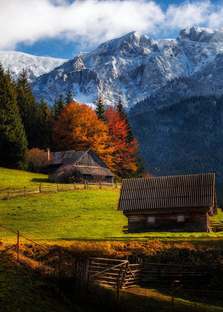 When autumn meets winter by Tiberiu Scarlat