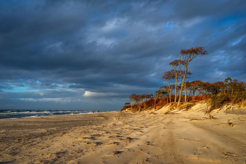 At the Baltic Sea by Ralf von Samson