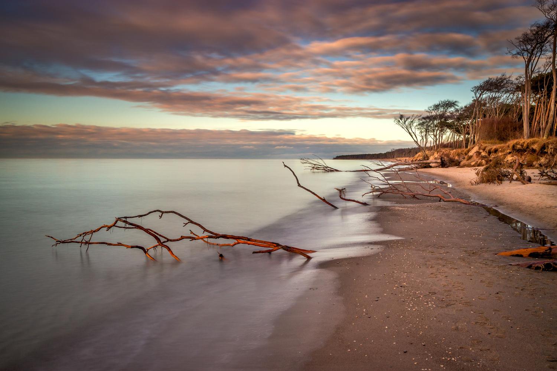 West Beach Darss Gemany by Ralf von Samson