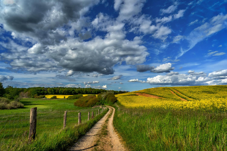 My Country by Ralf von Samson