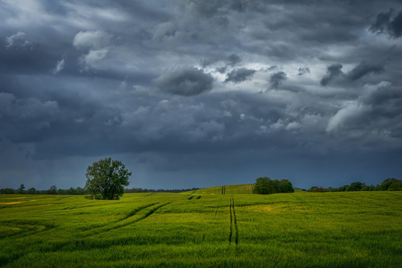 Coming Rain by Ralf von Samson