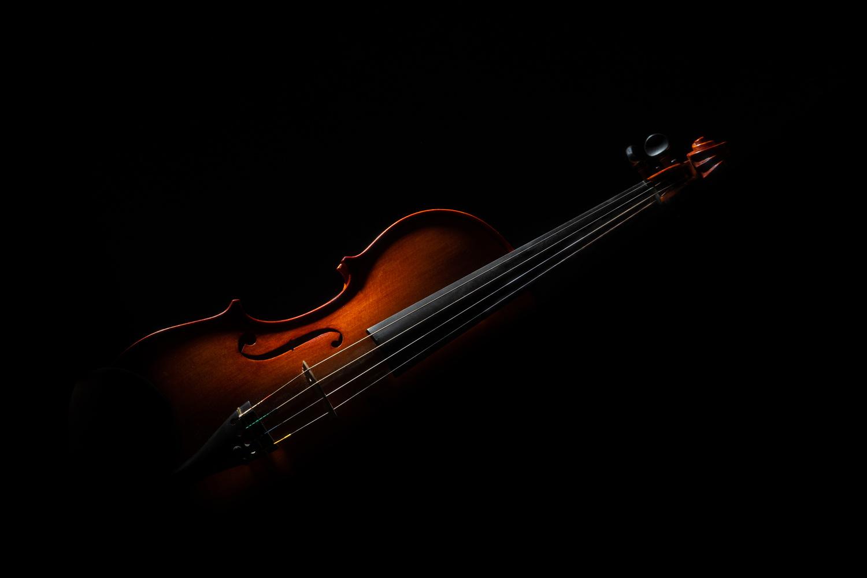 The Violin by Ralf von Samson