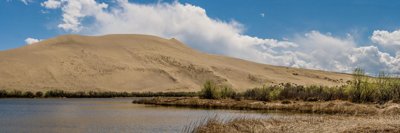 Bruneau Sand Dune by Kyle Rosenmeyer