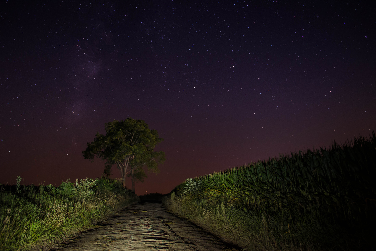 Back Dirt Roads  by Nathan Ruby