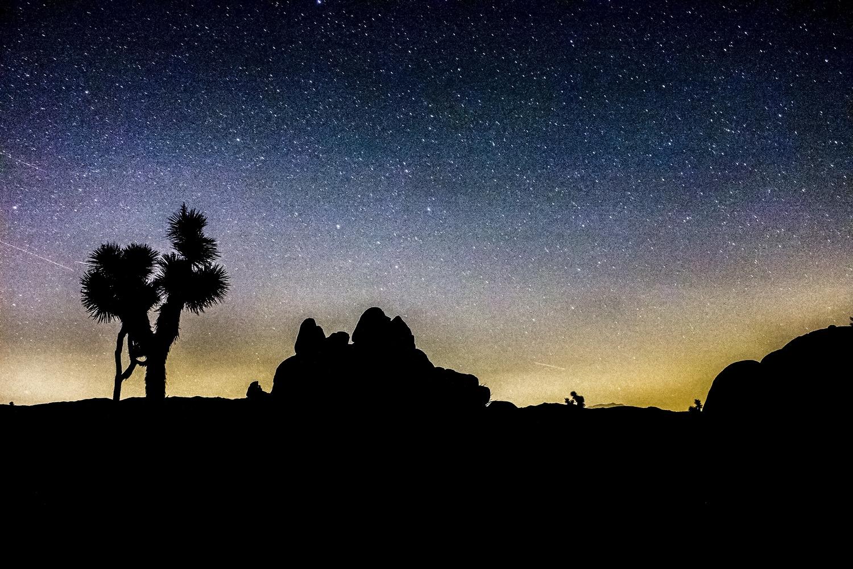 Starry sky over Joshua Tree by Markus Baumbach