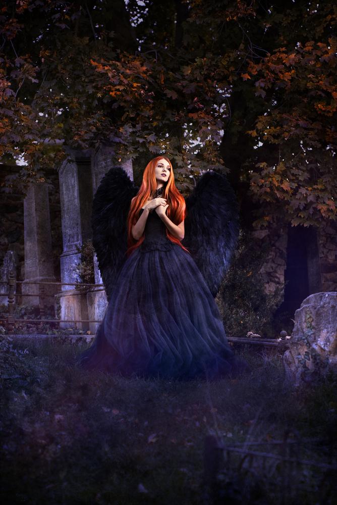 Fallen Angel by Hanna Wimmer