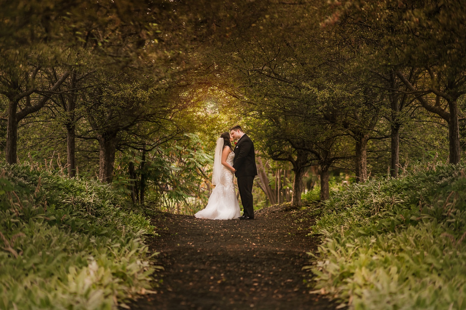 The Golden Hour Kiss by Austin Williams