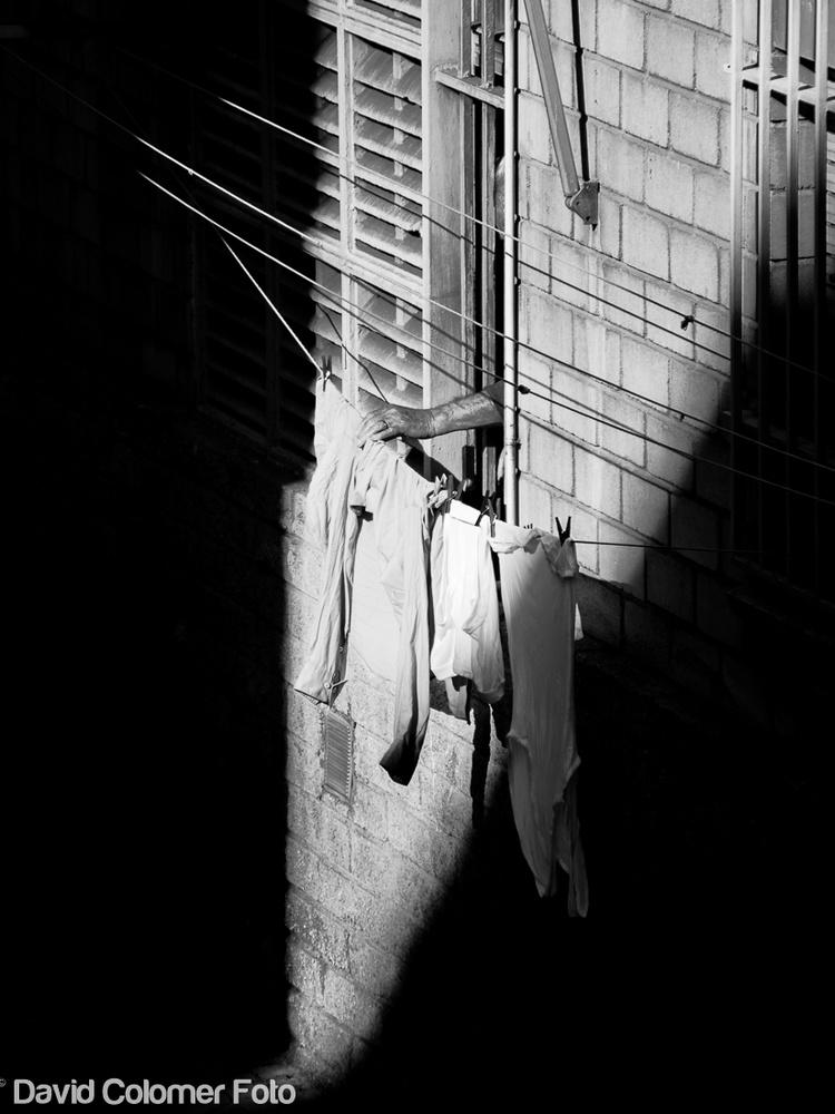 Winter Sun Drying  by David Colomer
