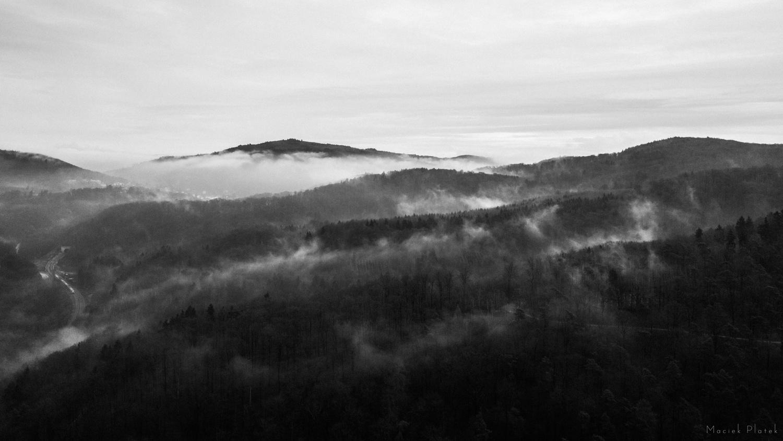 Trough the fog by Maciek Platek