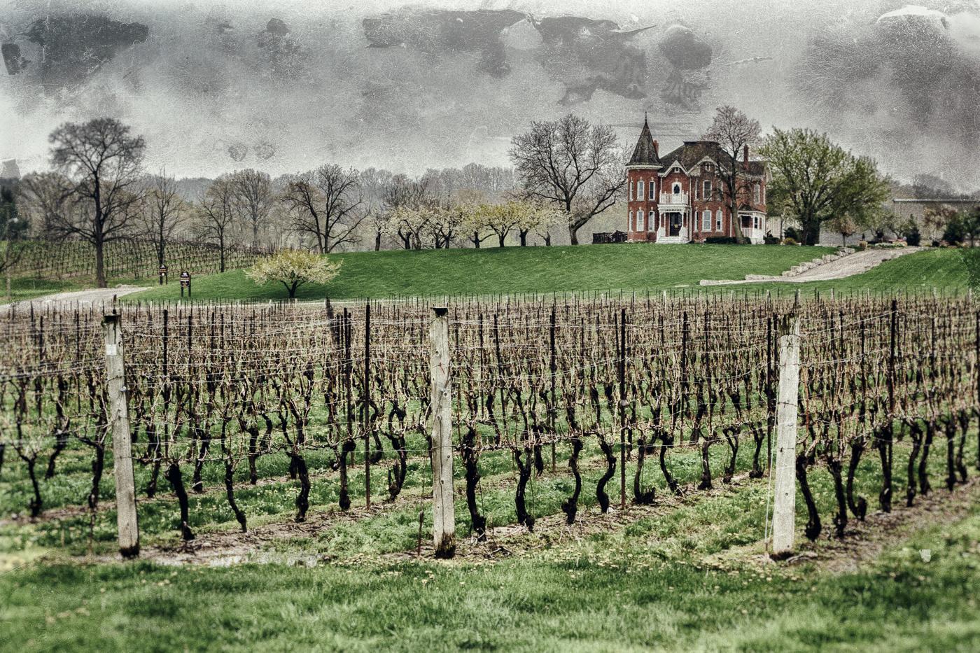 Peninsula Ridge Winery by vartkes peltekoglu