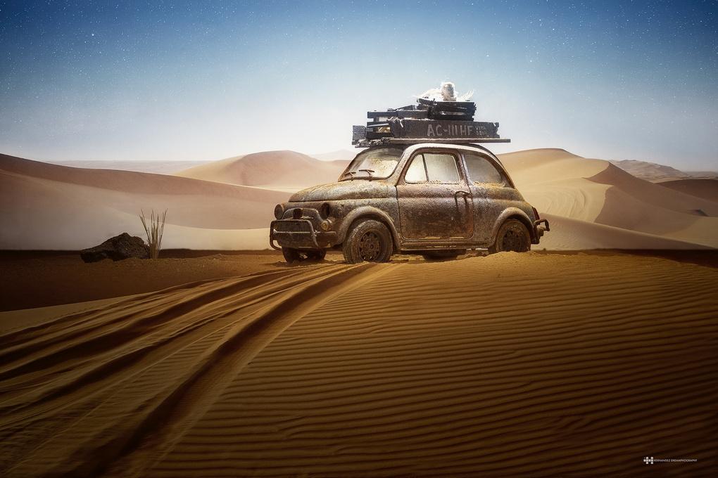 Journey by Felix Hernandez