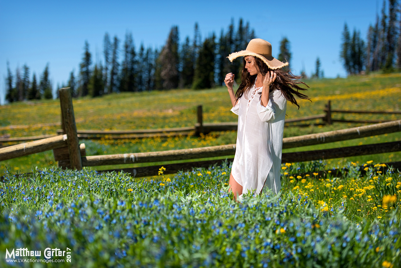 Tiffanie in the Meadow by Matthew Carter