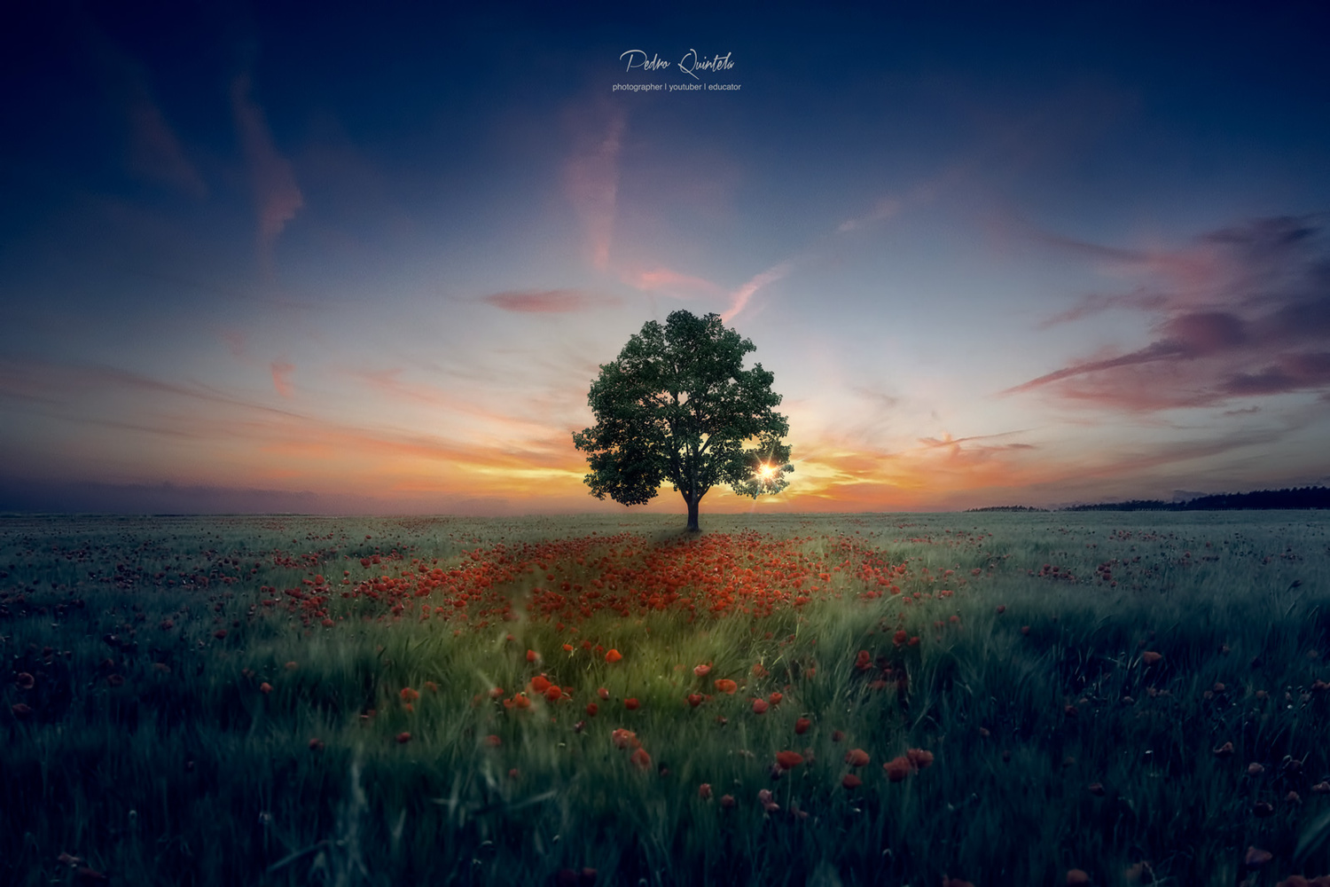The Queen and I by Pedro Quintela