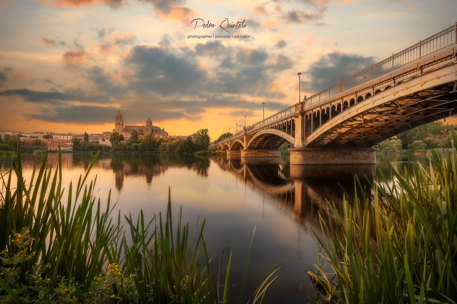 In the Distance by Pedro Quintela