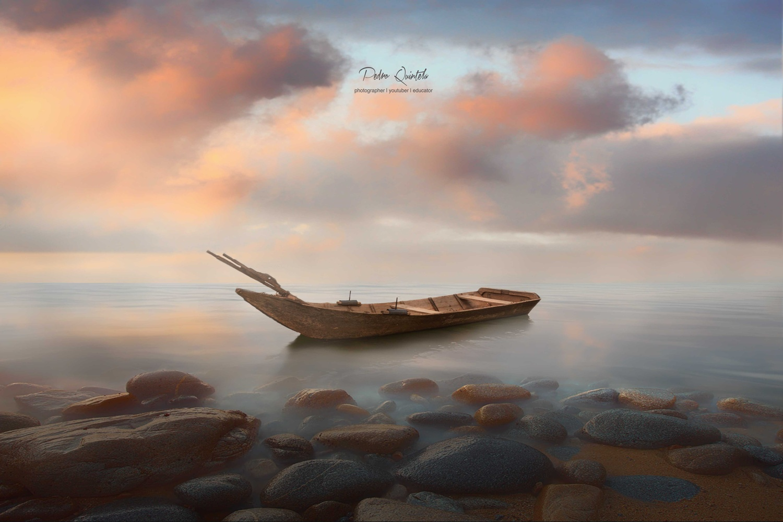 Sea of Love by Pedro Quintela