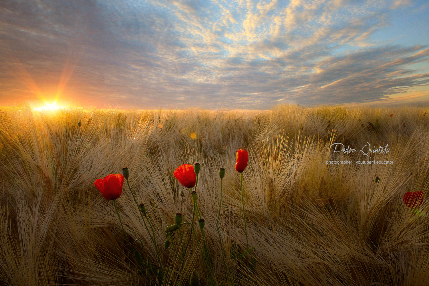Talking with God by Pedro Quintela