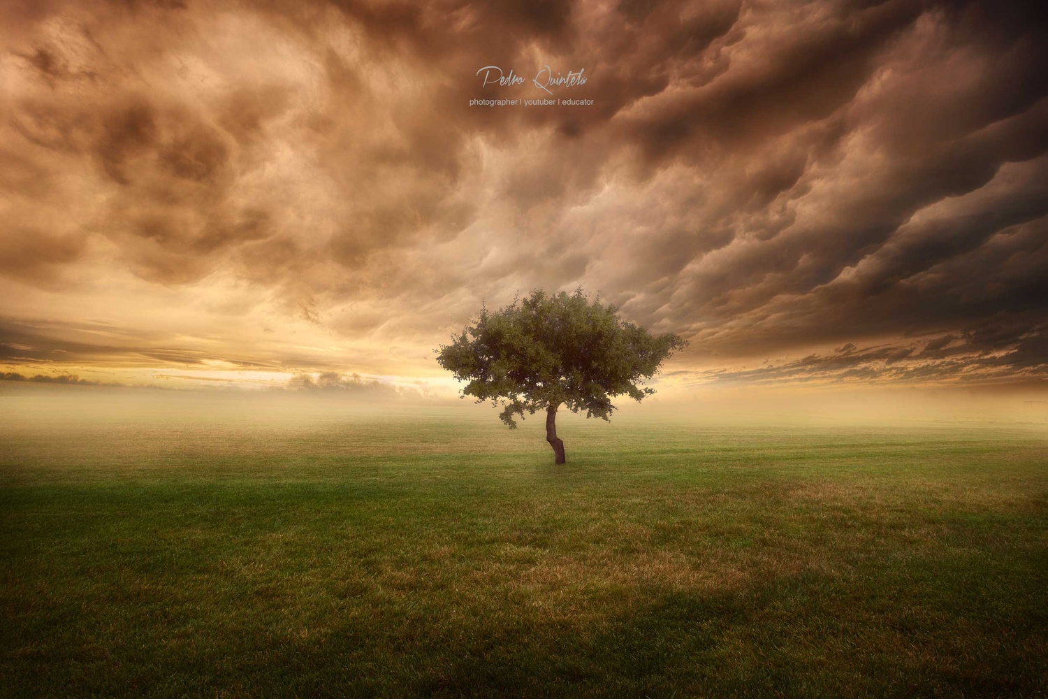 The Burning Heart  by Pedro Quintela