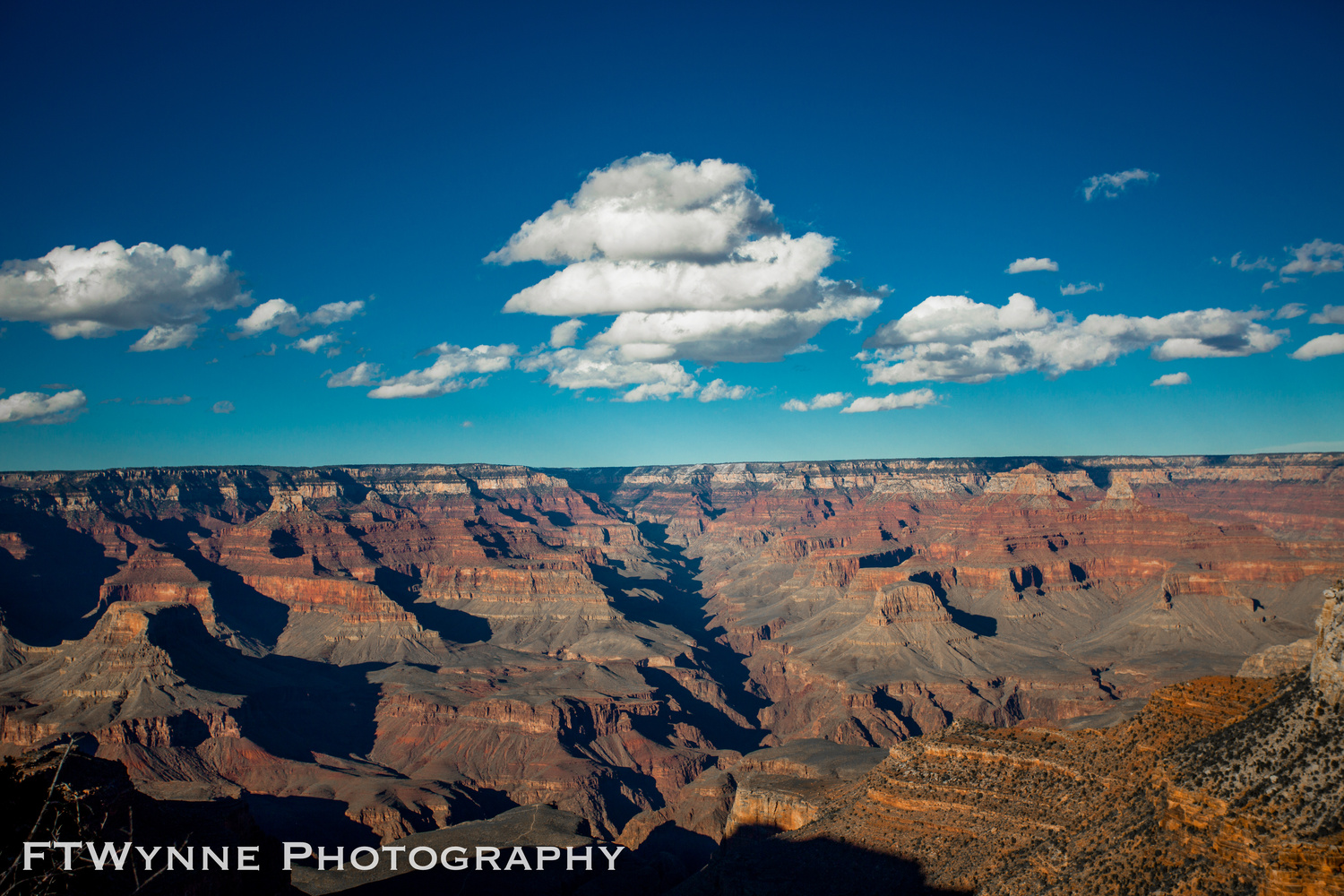 The Grand Canyon by David Wynne