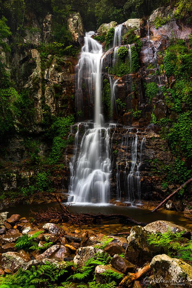 Minnamurra Falls by Matt Duke