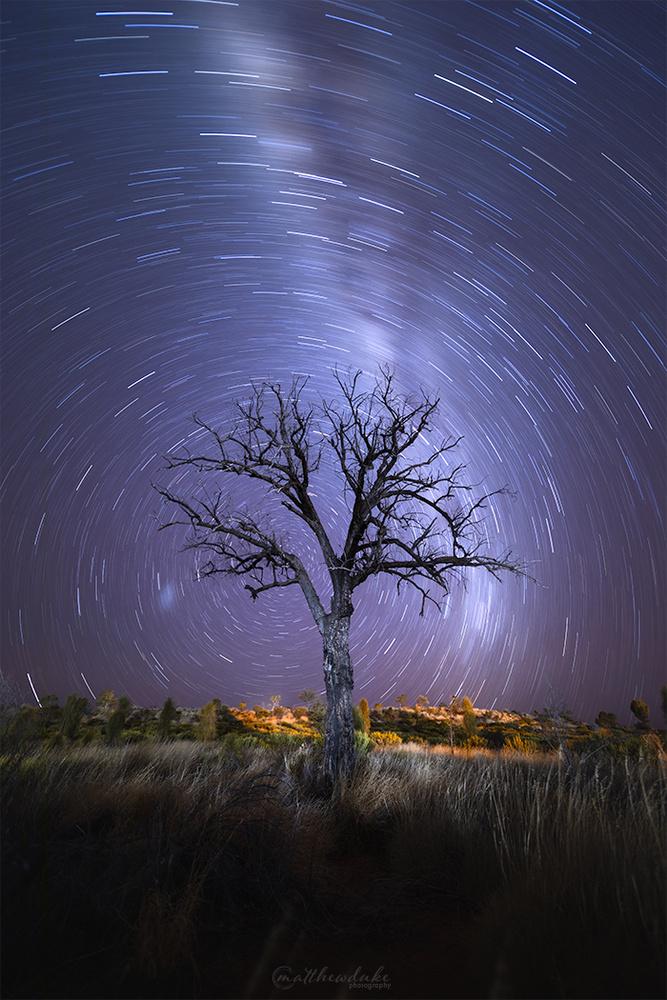 Lone Tree Vortex by Matt Duke
