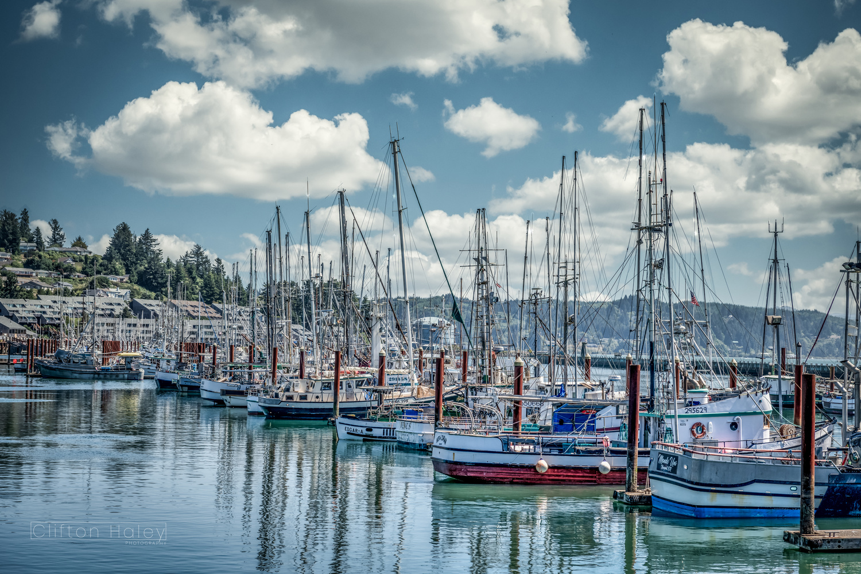 Peaceful Harbor by Clifton Haley