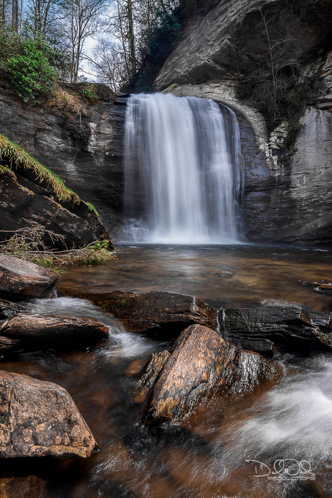 Looking Glass Falls by David Woods