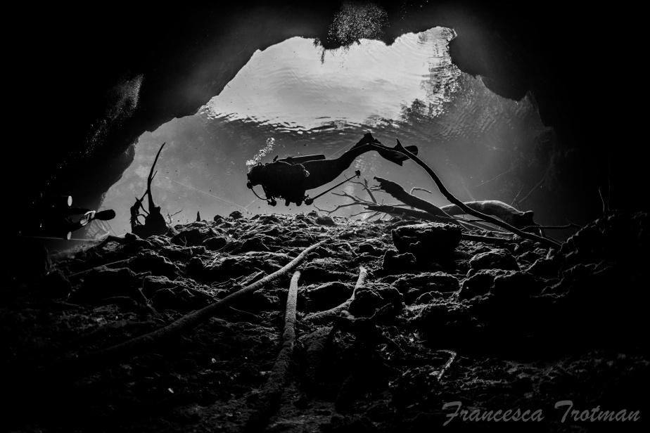 Floating Above by Francesca Trotman