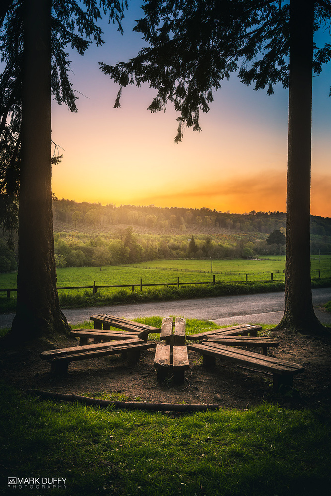 Ravensdale Forest Park Entrance Sunset by Mark Duffy