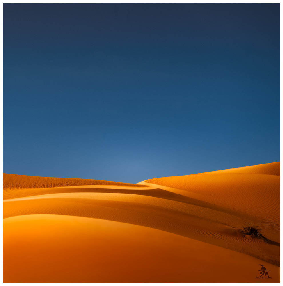 DESERT by Saajan Manuvel