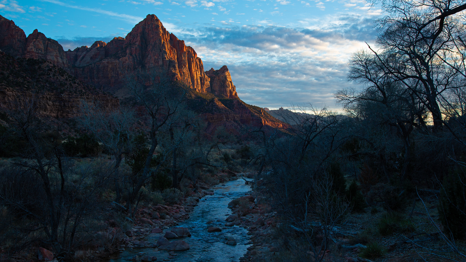 The Watchman by Rick Pappas