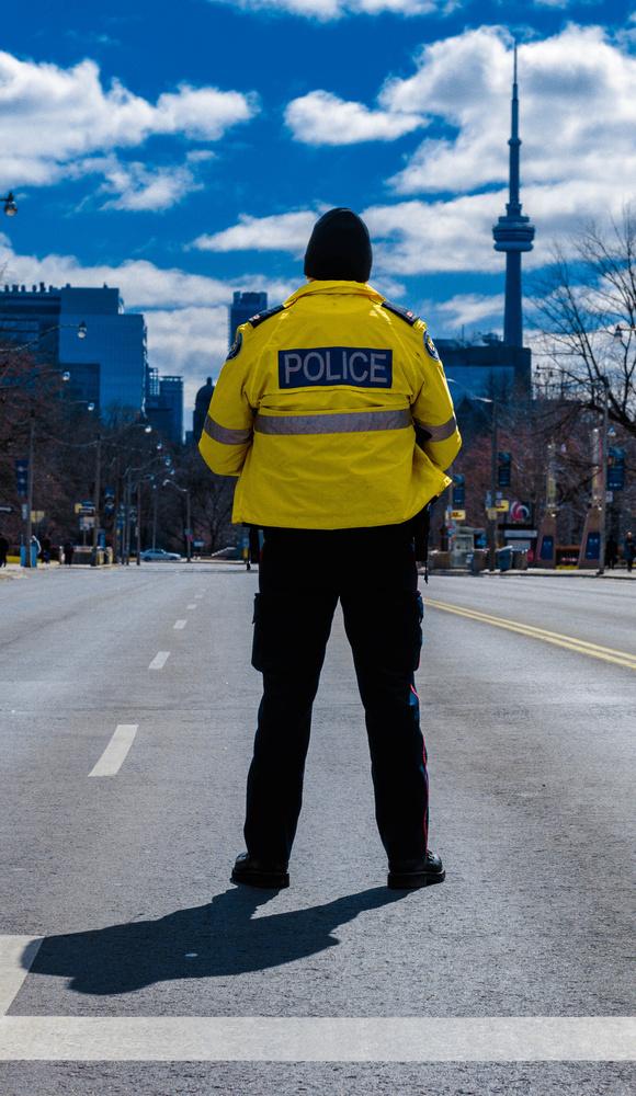 Officer on Duty by Robert MacMillan
