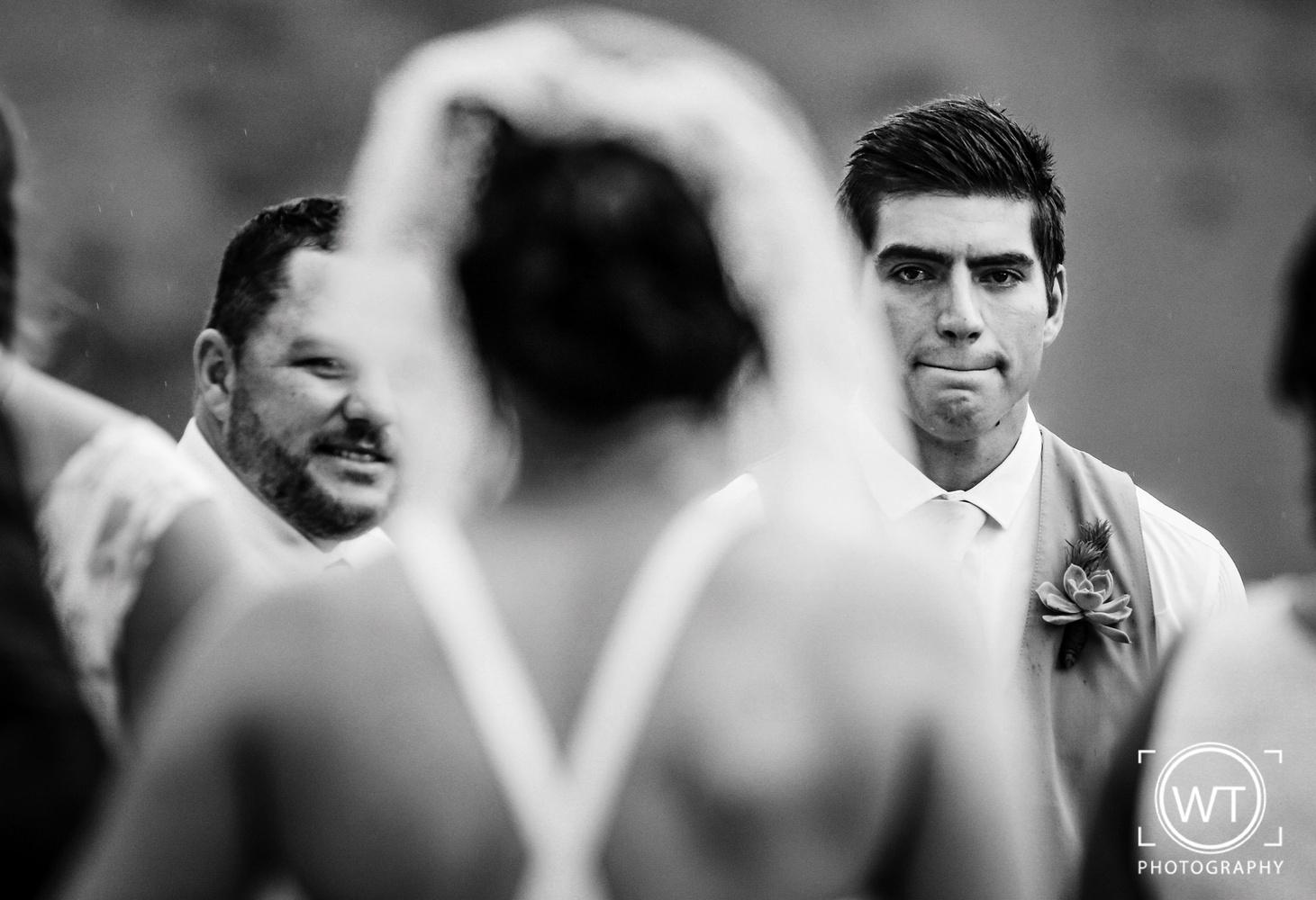 Seeing the Bride by Wayne van der Walt