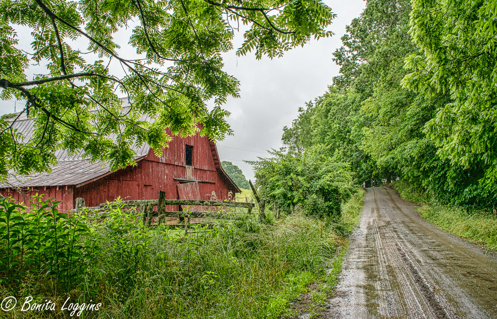 Red Barn in the Rain by Bonita Loggins