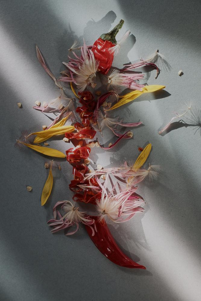 dying beauties by ivan joshua loh