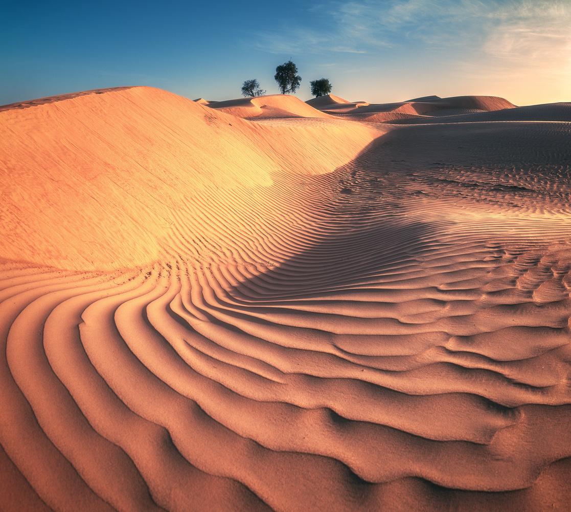 Oman - Wahiba Sands by Jean Claude Castor
