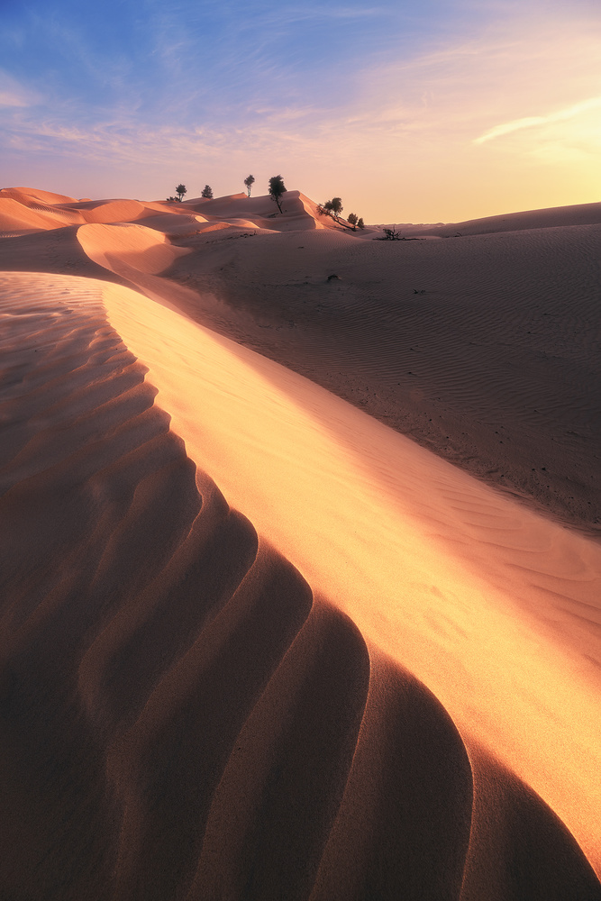 Oman - Wahiba Sands Sunset by Jean Claude Castor