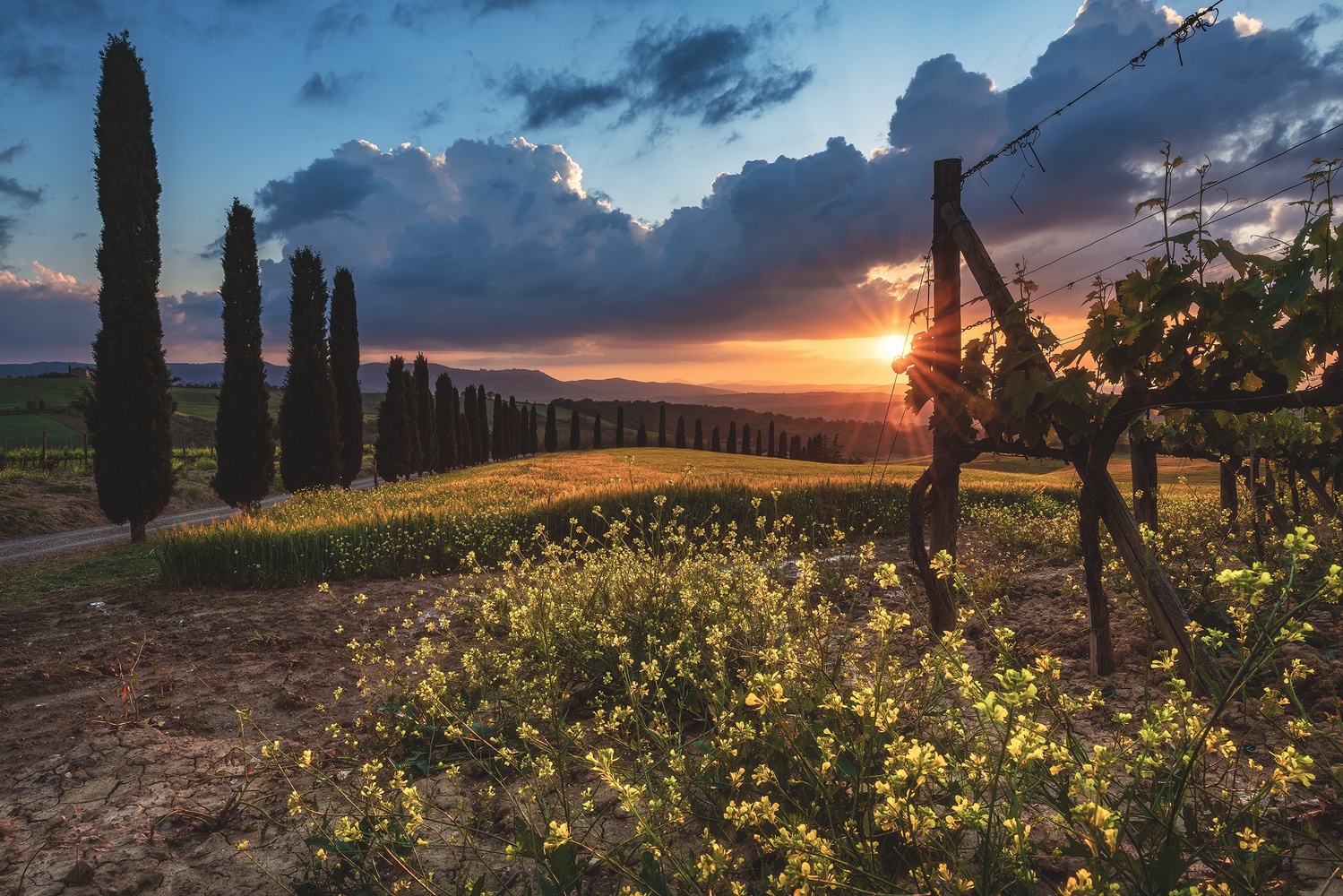 Tuscany - Colours of a Dream by Jean Claude Castor