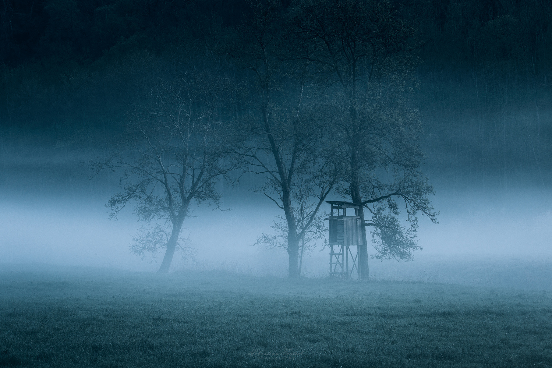 Mist by Sebastian Tontsch