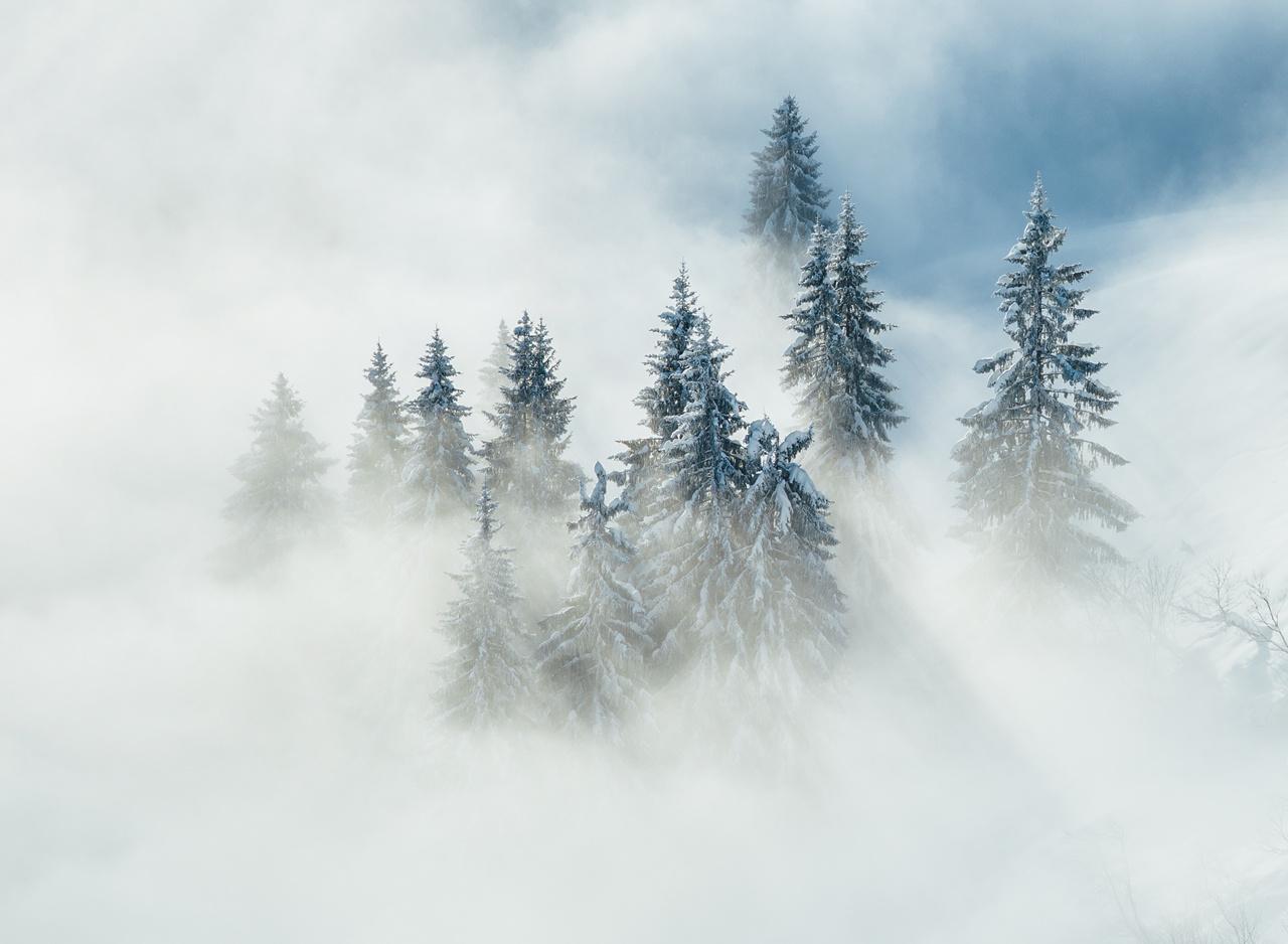 Tranquillity by Sebastian Tontsch
