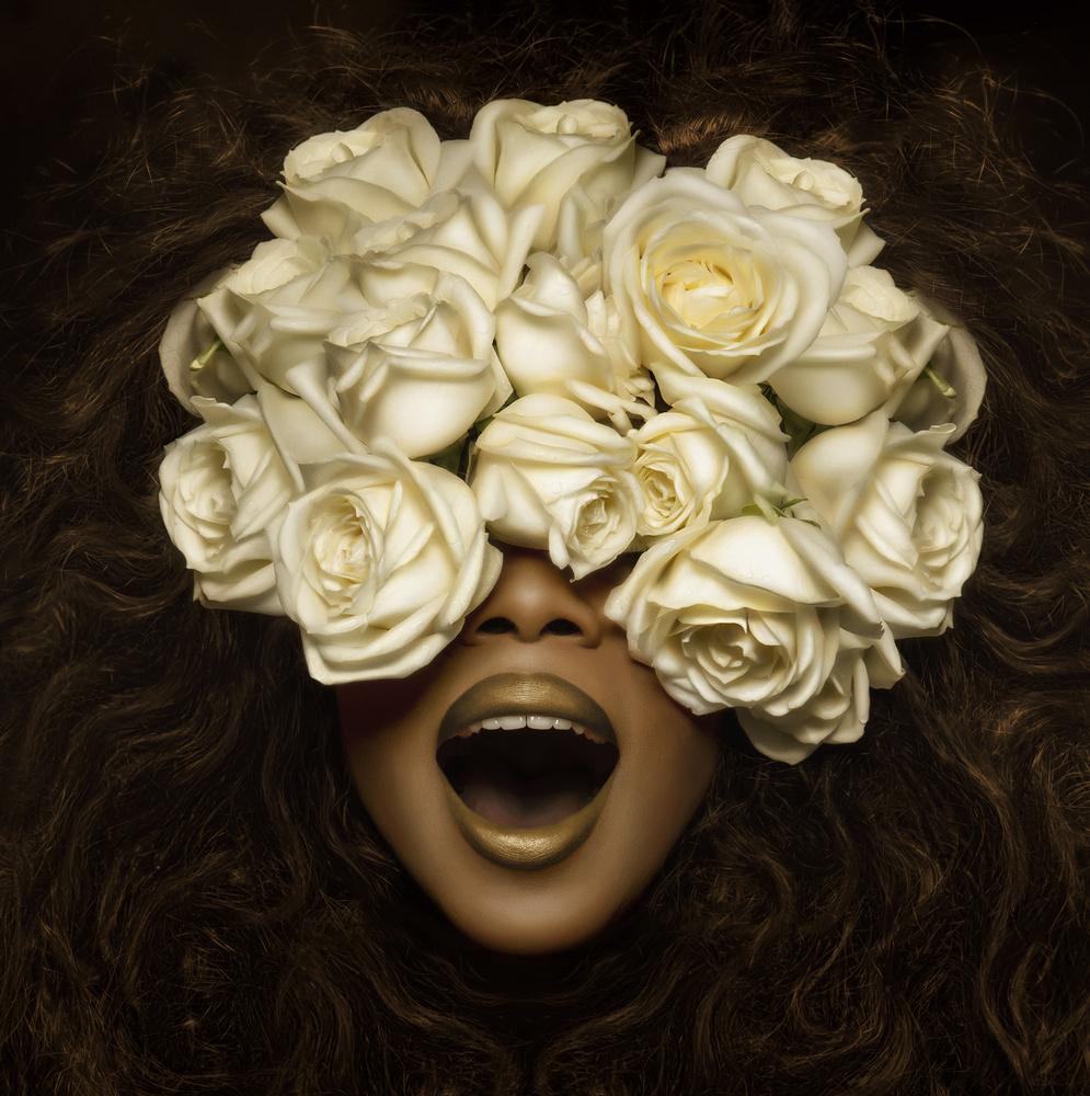 Six Roses by Kristina Stankeviciute-Polezajeva
