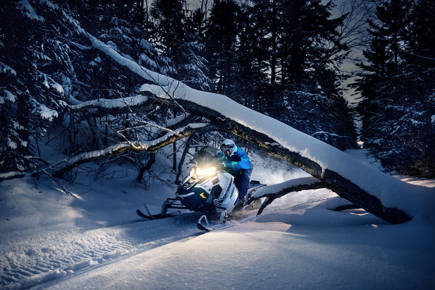 Winter Trail by Marek Dziekonski