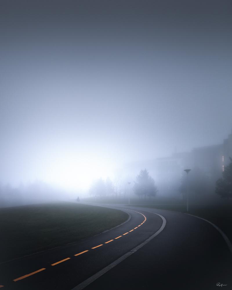Into the fog by Roger Hølmen