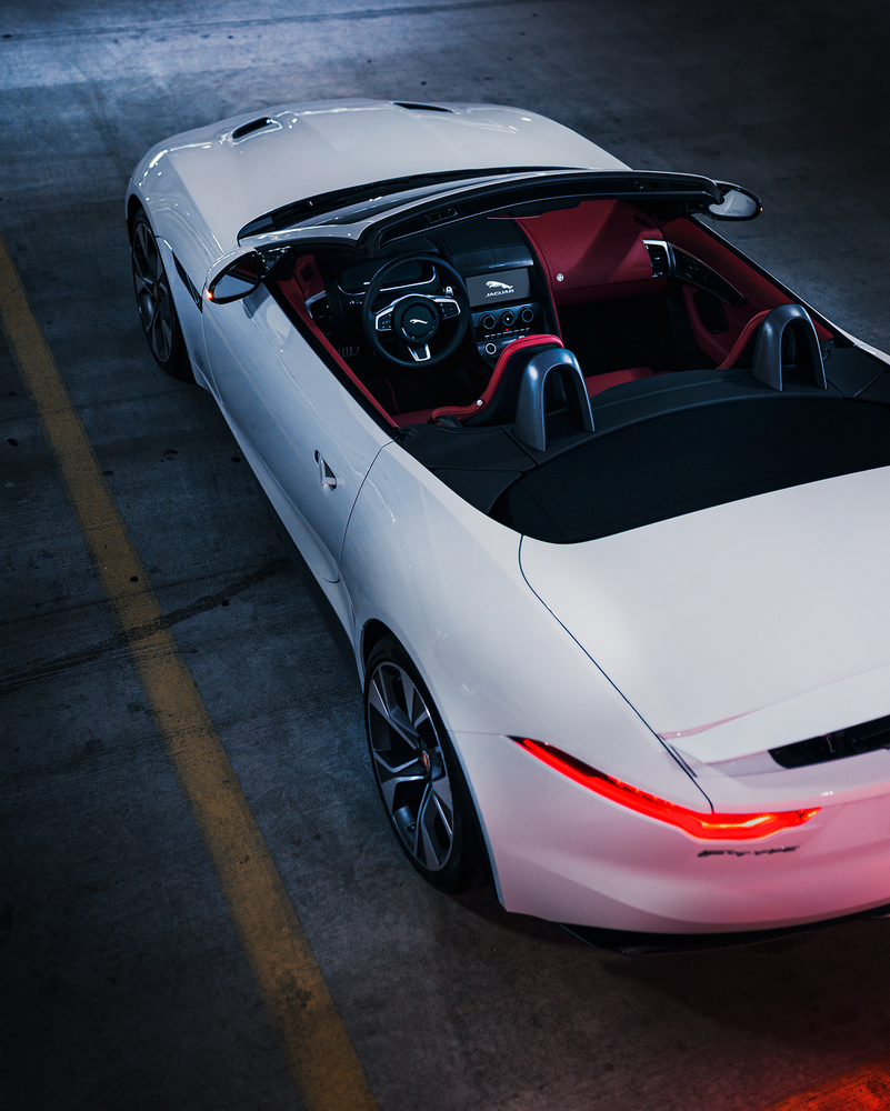 F-Type by Chris Petry