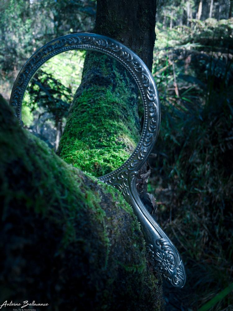 Capture a dream by Antoine Bellavance