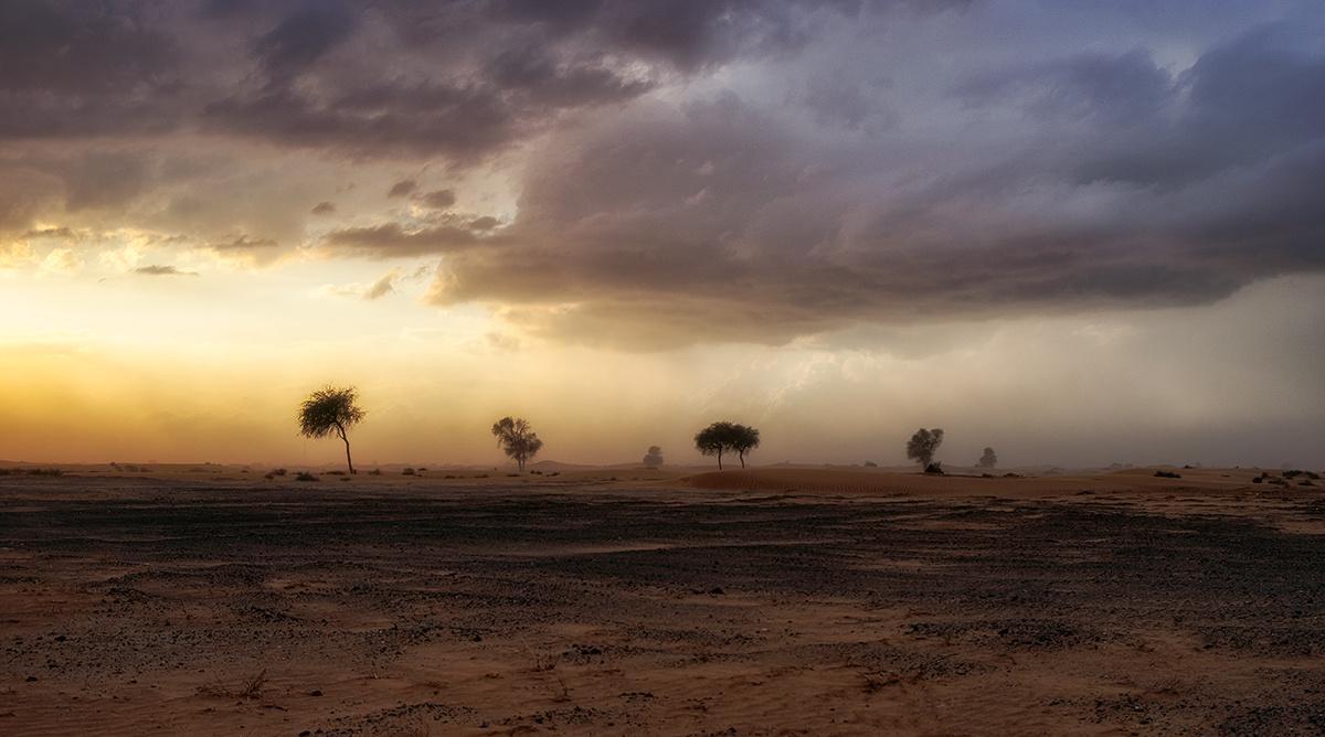Darkness and Light by Aks Azeem